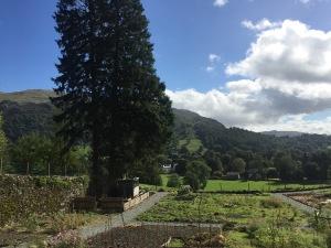allanbank-garden