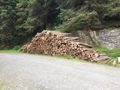 whinlatter-logstack